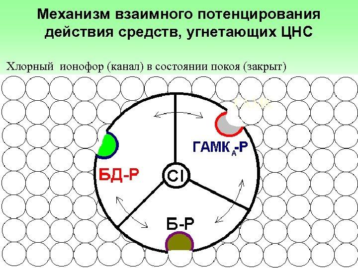 Механизм взаимного потенцирования действия средств, угнетающих ЦНС Хлорный ионофор (канал) в состоянии покоя (закрыт)
