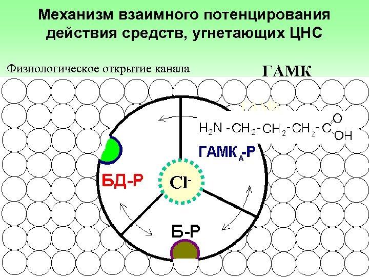 Механизм взаимного потенцирования действия средств, угнетающих ЦНС Физиологическое открытие канала ГАМК Сl-