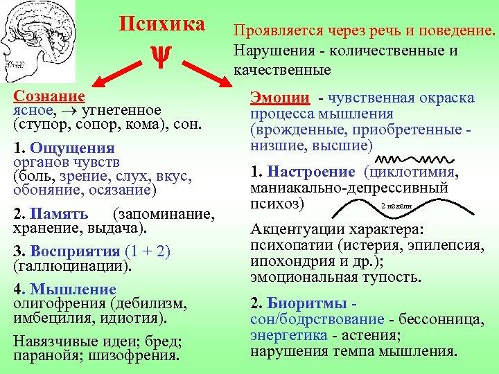 Психика Сознание ясное, угнетенное (ступор, сопор, кома), сон. 1. Ощущения органов чувств (боль, зрение,