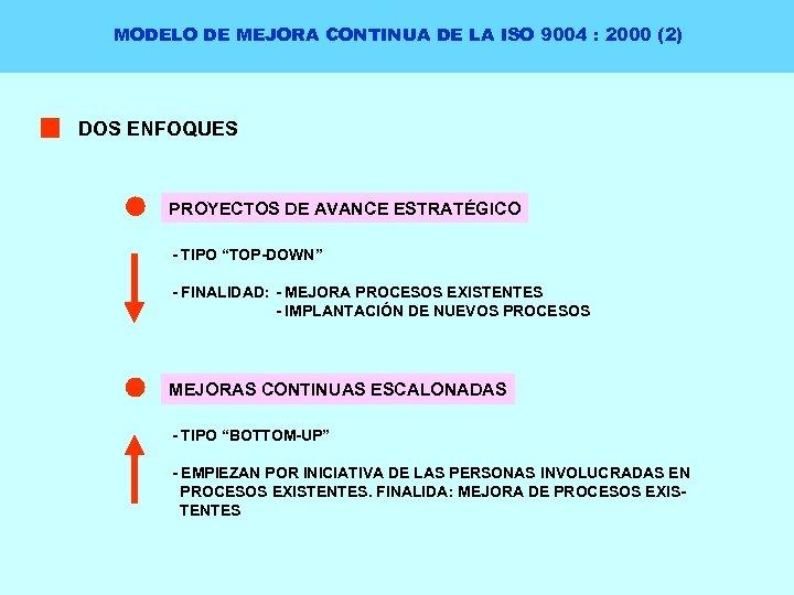 MODELO DE MEJORA CONTINUA DE LA ISO 9004 : 2000 (2) DOS ENFOQUES PROYECTOS