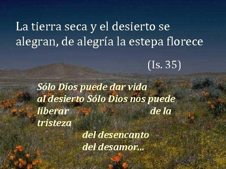 La tierra seca y el desierto se alegran, de alegría la estepa florece (Is.