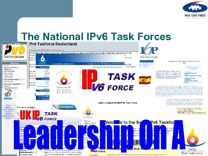 The National IPv 6 Task Forces 17