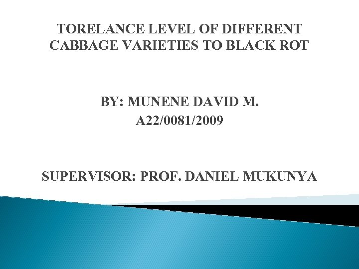 TORELANCE LEVEL OF DIFFERENT CABBAGE VARIETIES TO BLACK ROT BY: MUNENE DAVID M. A