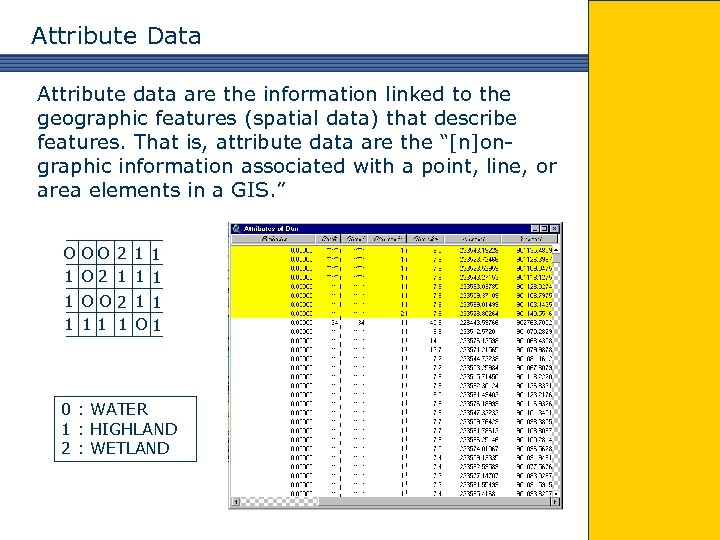 Attribute Data Attribute data are the information linked to the geographic features (spatial data)
