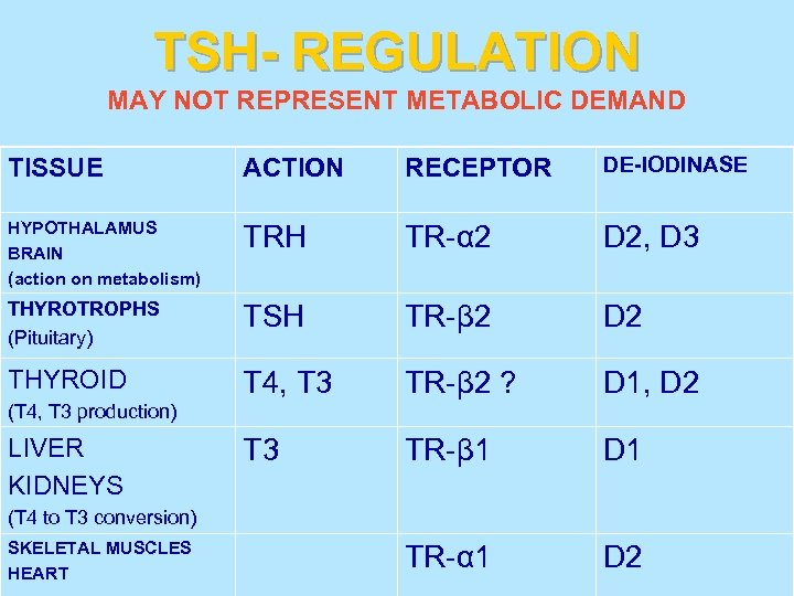 TSH- REGULATION MAY NOT REPRESENT METABOLIC DEMAND TISSUE ACTION RECEPTOR DE-IODINASE HYPOTHALAMUS BRAIN (action