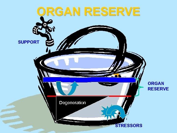 ORGAN RESERVE SUPPORT ORGAN RESERVE Degeneration STRESSORS