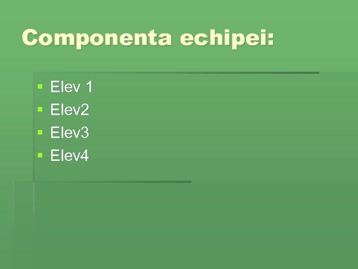 Componenta echipei: § § Elev 1 Elev 2 Elev 3 Elev 4