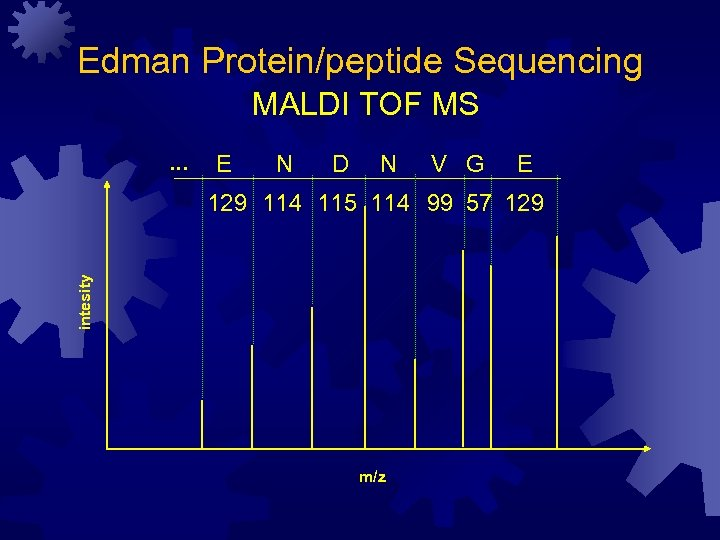 Edman Protein/peptide Sequencing MALDI TOF MS. . . E N D N V G