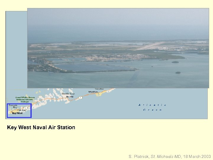 Key West Naval Air Station S. Platnick, St. Michaels MD, 18 March 2003