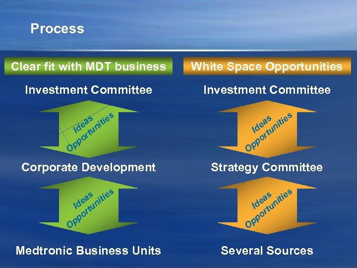 Process Clear fit with MDT business White Space Opportunities Investment Committee s s s