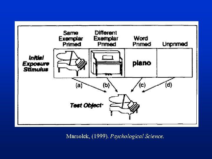 Marsolek, (1999). Psychological Science.