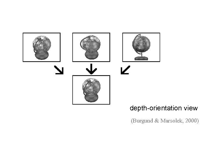 depth-orientation view (Burgund & Marsolek, 2000)