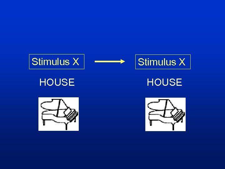 Stimulus X HOUSE