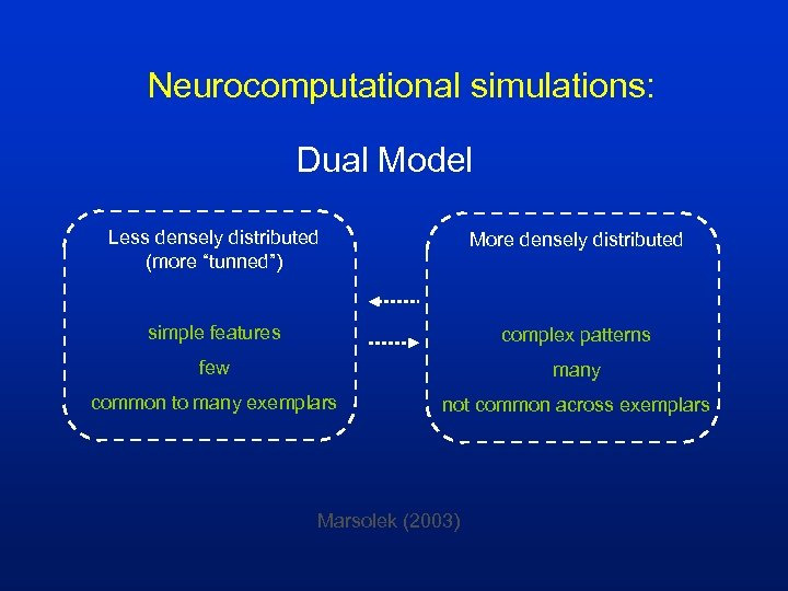 """Neurocomputational simulations: Dual Model Less densely distributed (more """"tunned"""") More densely distributed simple features"""