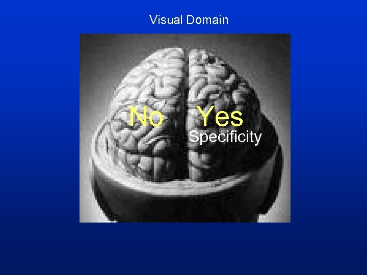 Visual Domain No Yes Specificity