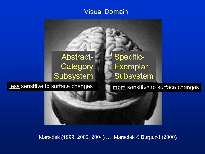 Visual Domain Abstract. Category Subsystem less sensitive to surface changes Specific. Exemplar Subsystem more