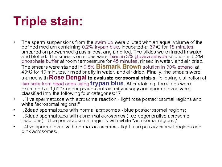 Triple stain: • • • The sperm suspensions from the swim-up were diluted with