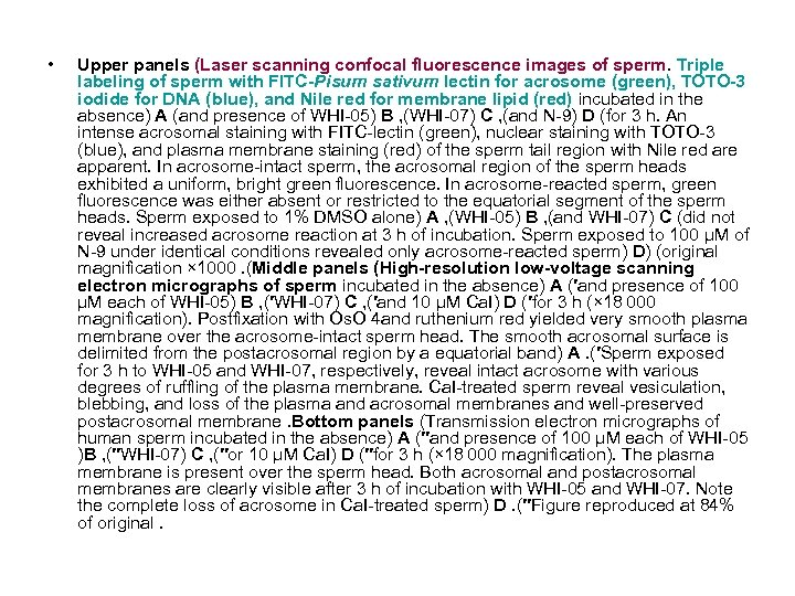 • Upper panels (Laser scanning confocal fluorescence images of sperm. Triple labeling of