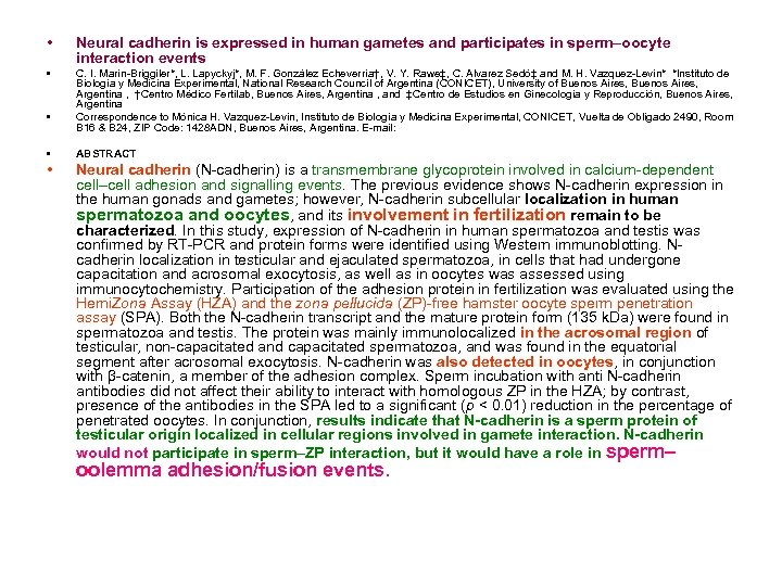 • Neural cadherin is expressed in human gametes and participates in sperm–oocyte interaction