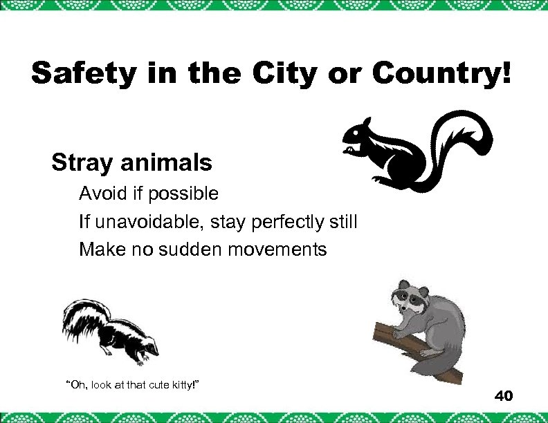 Safety in the City or Country! Stray animals Avoid if possible If unavoidable, stay