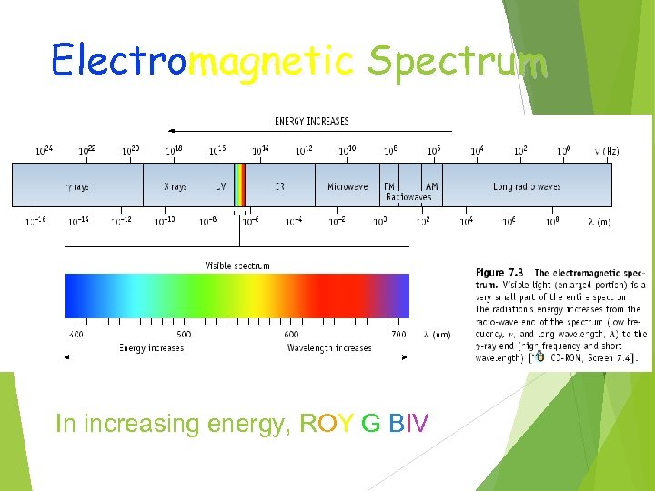 Electromagnetic Spectrum In increasing energy, ROY G BIV