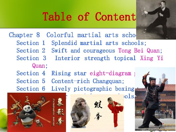 Table of Contents Chapter 8 Colorful martial arts schools; Section 1 Section 2 Section