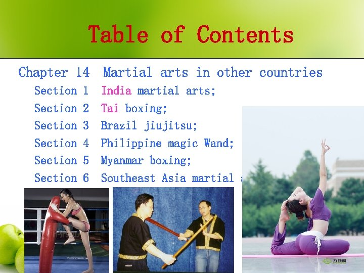 Table of Contents Chapter 14 Section Section Martial arts in other countries 1 India