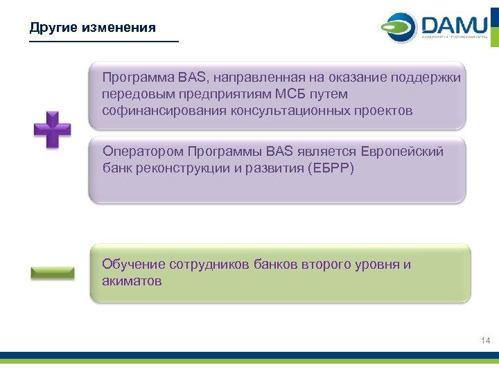 Другие изменения Программа BAS, направленная на оказание поддержки передовым предприятиям МСБ путем софинансирования консультационных