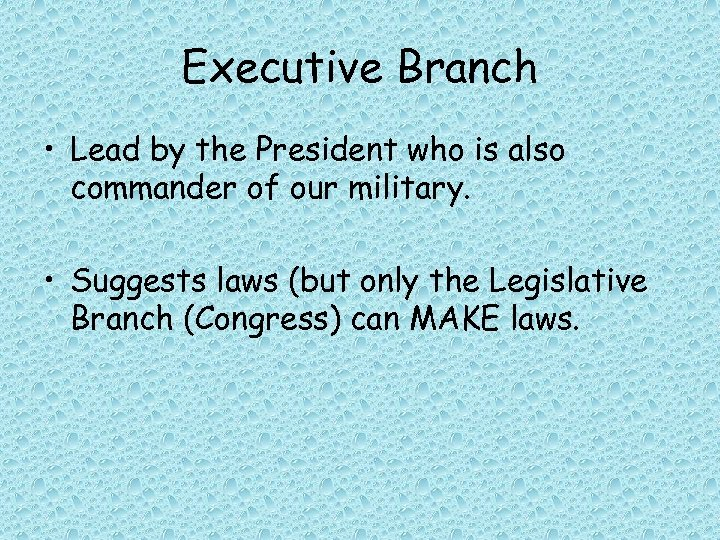 Executive Branch • Lead by the President who is also commander of our military.