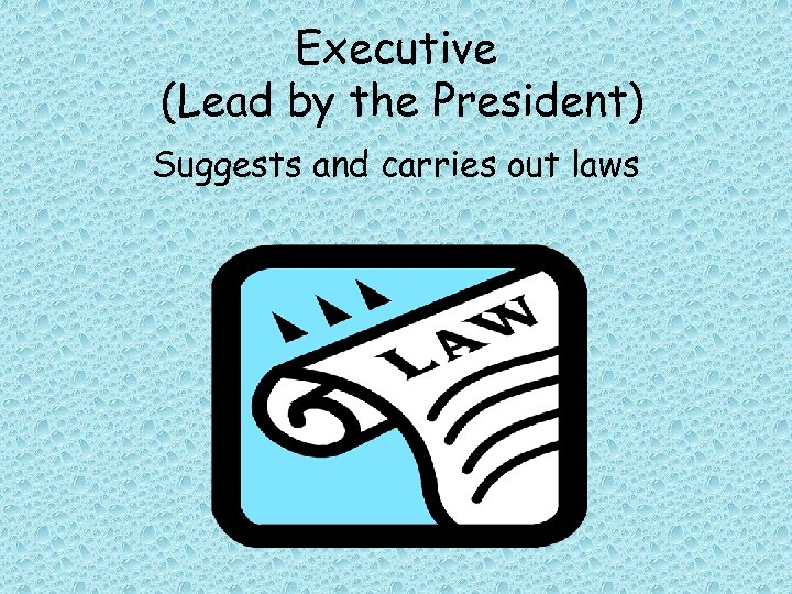 Executive (Lead by the President) Suggests and carries out laws