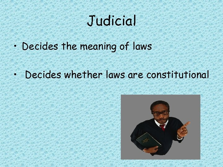 Judicial • Decides the meaning of laws • Decides whether laws are constitutional