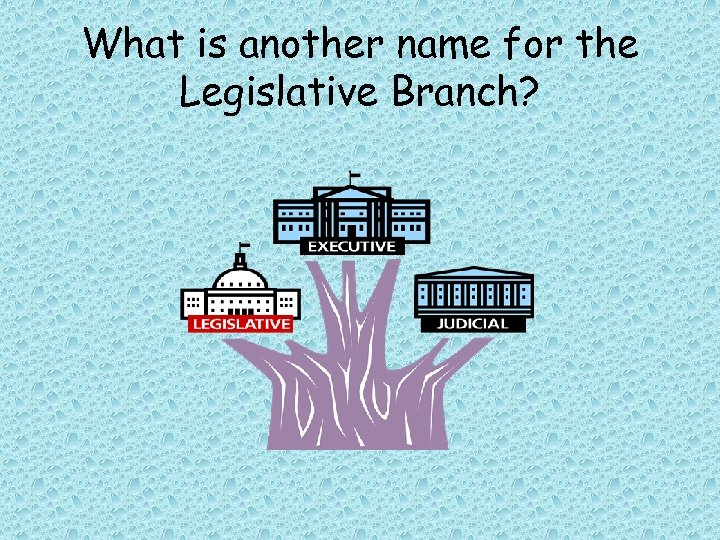 What is another name for the Legislative Branch?