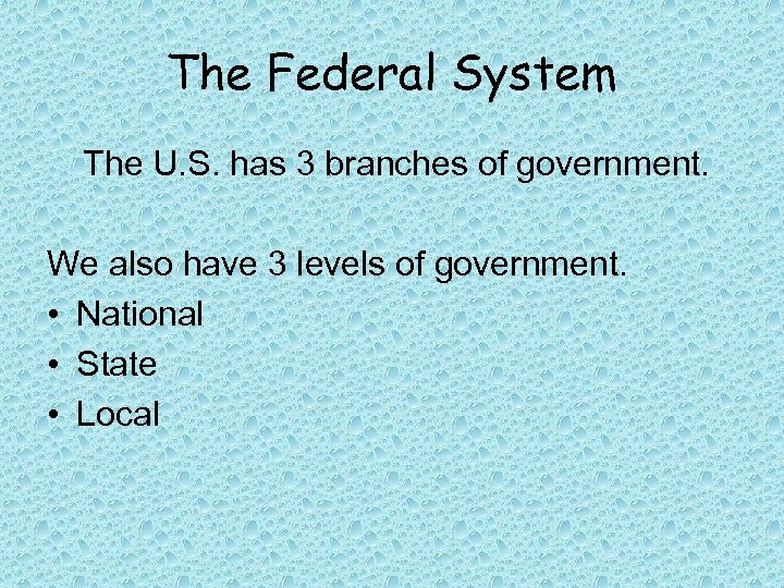 The Federal System The U. S. has 3 branches of government. We also have