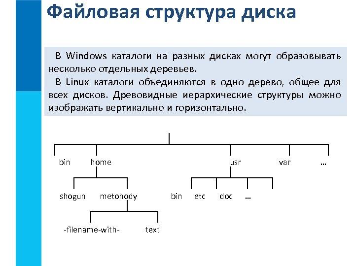 Файловая структура диска В Windows каталоги на разных дисках могут образовывать несколько отдельных деревьев.