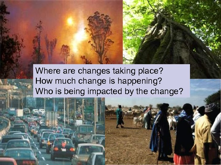 Global Change Where are changes taking place? How much change is happening? Who is