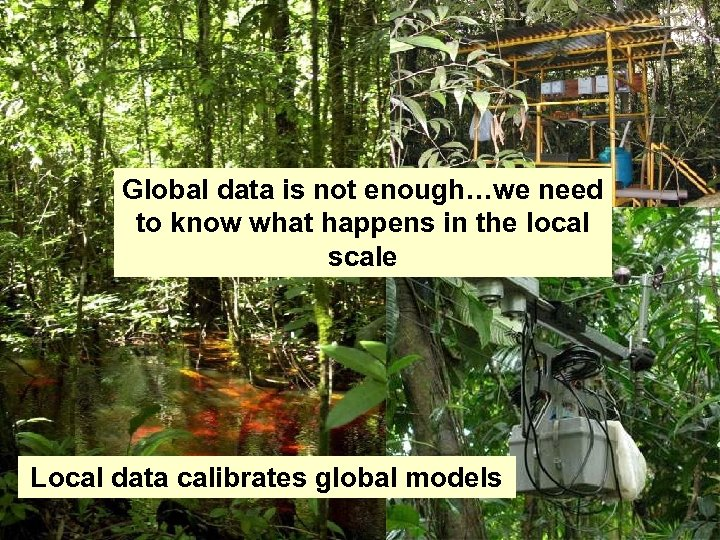 Global data is not enough…we need to know what happens in the local scale