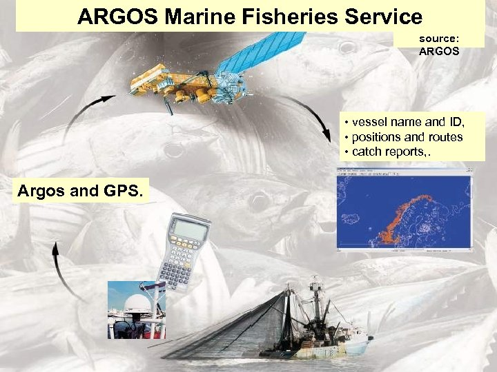 ARGOS Marine Fisheries Service source: ARGOS • vessel name and ID, • positions and