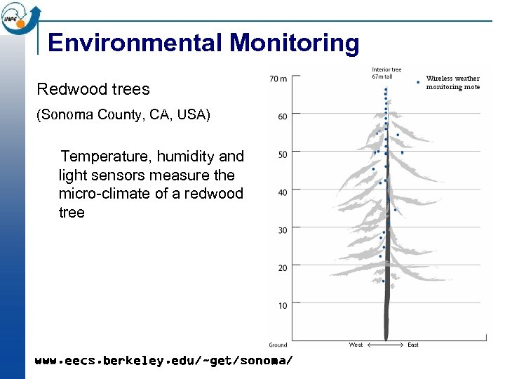 Environmental Monitoring Redwood trees (Sonoma County, CA, USA) Temperature, humidity and light sensors measure