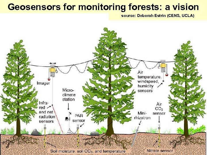 Geosensors for monitoring forests: a vision source: Deborah Estrin (CENS, UCLA)