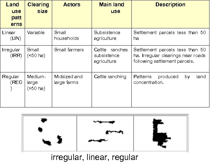 Land Clearing use size patt erns Actors Main land use Description Linear Variable (LIN)