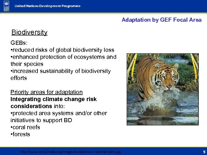 Adaptation by GEF Focal Area Biodiversity GEBs: • reduced risks of global biodiversity loss