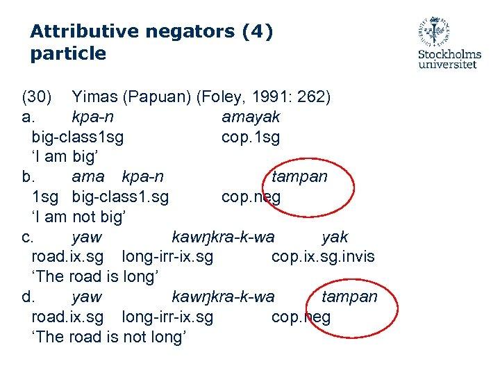 Attributive negators (4) particle (30) Yimas (Papuan) (Foley, 1991: 262) a. kpa-n amayak big-class