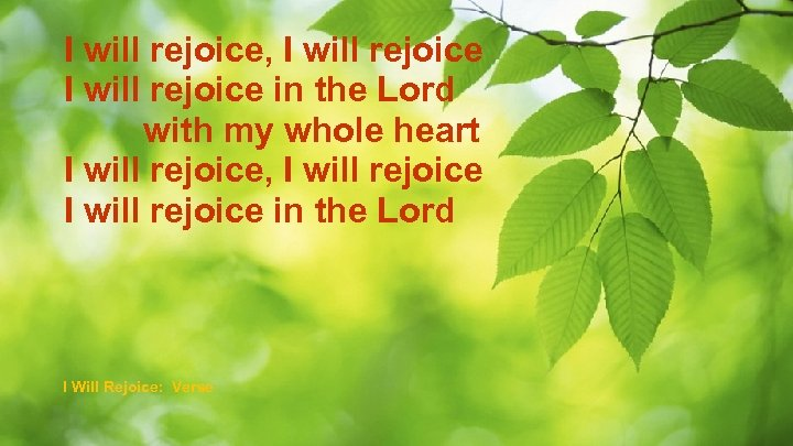 I will rejoice, I will rejoice in the Lord with my whole heart I