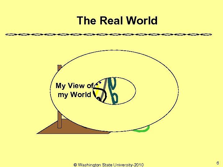 The Real World My View of my World © Washington State University-2010 6