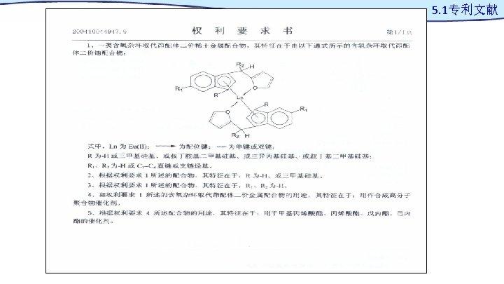 5. 1专利文献