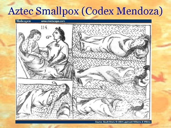 Aztec Smallpox (Codex Mendoza)