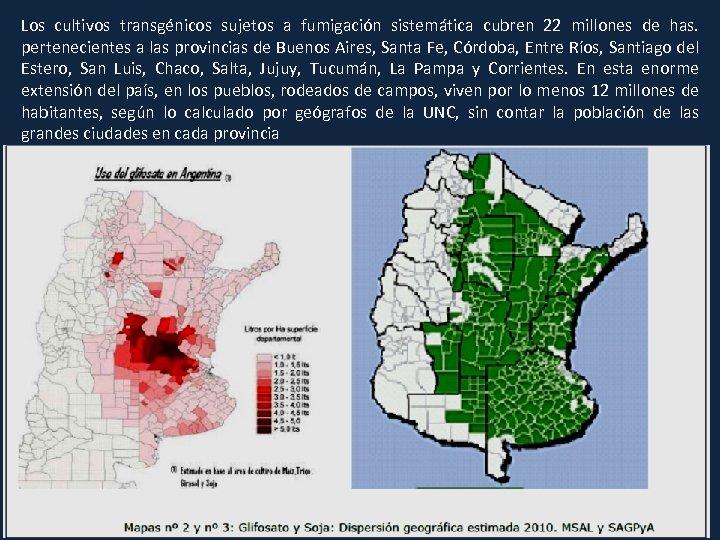 Los cultivos transgénicos sujetos a fumigación sistemática cubren 22 millones de has. pertenecientes a