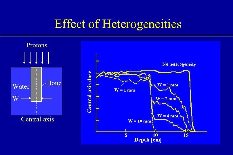 Effect of Heterogeneities Protons Water Bone W Central axis dose No heterogeneity W =