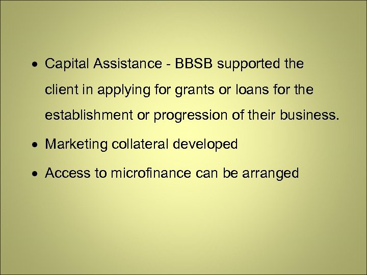 Capital Assistance - BBSB supported the client in applying for grants or loans