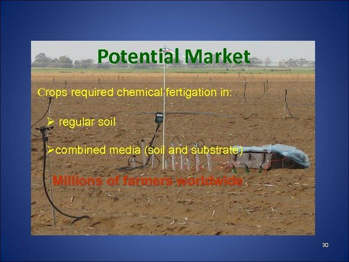 Potential Market Crops required chemical fertigation in: Ø regular soil Øcombined media (soil and